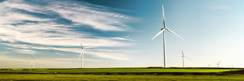 vindkraftverk på ett fält.